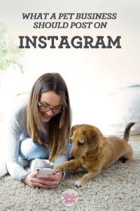 What pet businesses should promote on Instagram