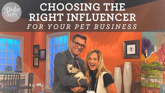Choose the right influencer for your pet business or related industry.